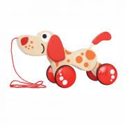 Hündchen Puppy