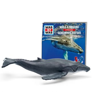 Hörspielfigur Was ist was - Wale & Delfine, Geheimnis Tiefsee