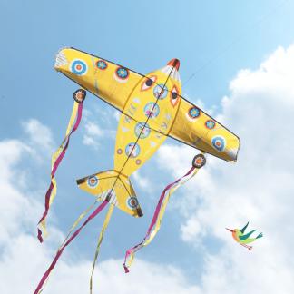 Flugdrache Maxi Flugzeug Djeco